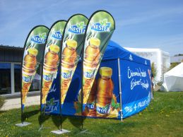 beachflags_nestea_2.jpg